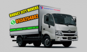 Choose Professional Movers and Packers in Dubai