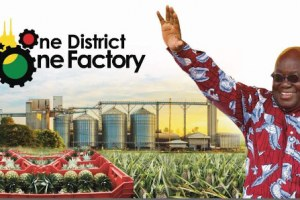 Here are the factories commissioned, revamped under 1D1F in two months